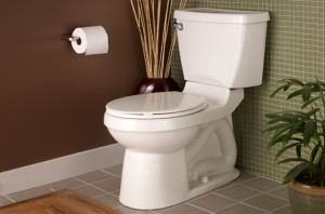 American Standard Toilet